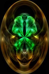 Mystic Tortoise