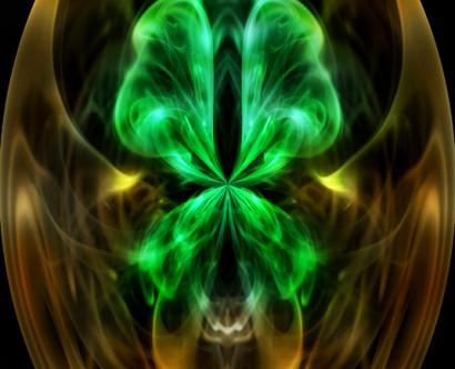 Mystic Tortoise - © Jay Payne